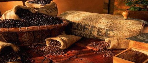 Сорта кофе Арабика